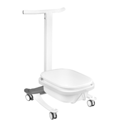 Foot bath with lifting function